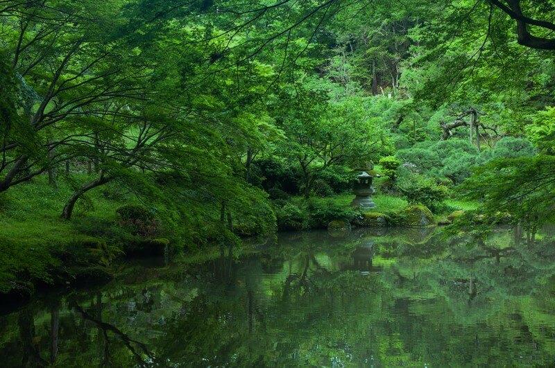 千葉成田山の初詣参考画像