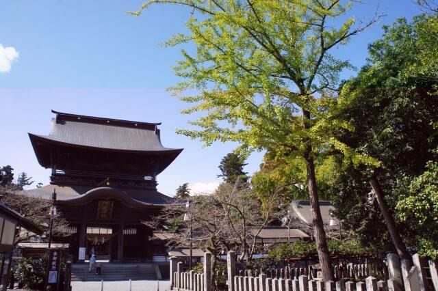 熊本阿蘇神社初詣の参考画像
