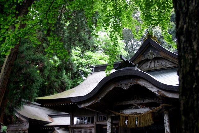 高千穂神社初詣の参考画像