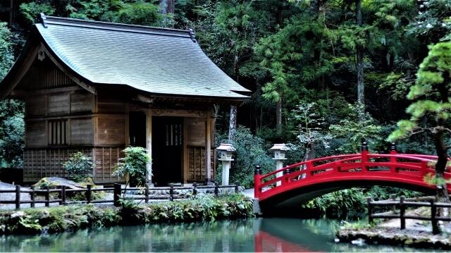 小國神社初詣の参考画像